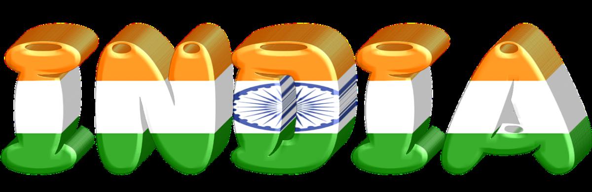 India Trip Summary