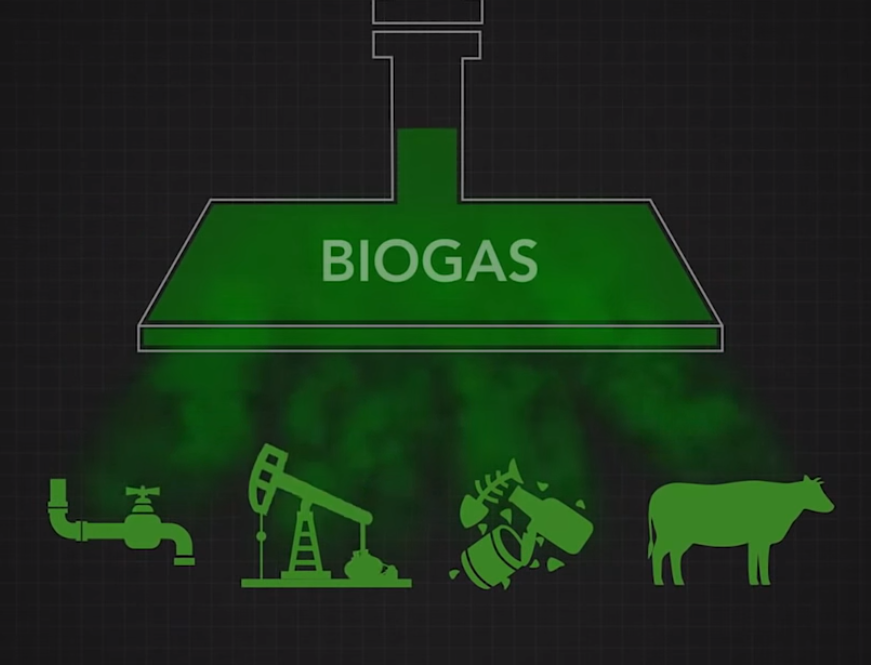 Biogas Electrical Generation